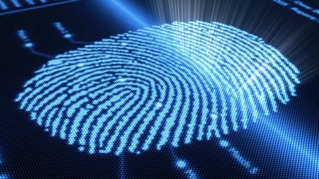 Digital image of fingerprint on-screen