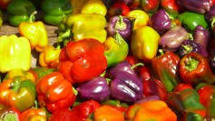 Colorful and diverse peppers on a farmers' market