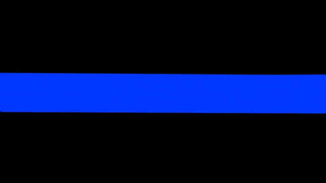 """The Thin Blue Line"" - once a show of solidarity, now a display of corruption"