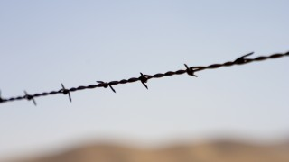 Barbed wire, symbolizing blockade
