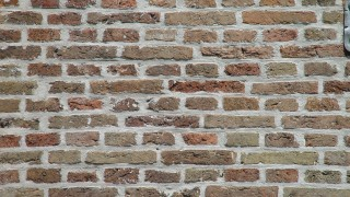Brick Wall. Can be talked to more efficiently than politicians.
