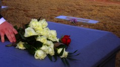 [Image: Roses-on-coffin-by-blmurch-at-flickr-CCBY-237x133.jpg]