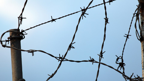 BarbedWire-480px